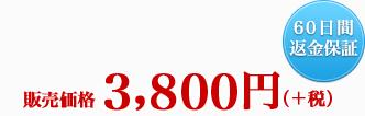 販売価格 3,990円(税込) 60日間返金保証